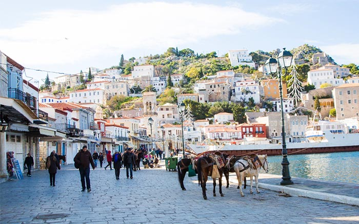 Donkeys on Hydra, Greece