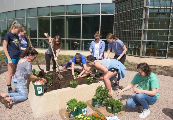 Botany students planting garden at SCSU science building